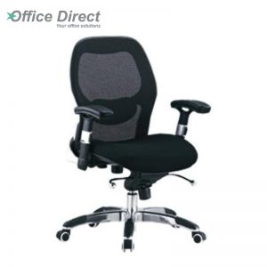 ANZA AZ-2 low back office chair-custom colour