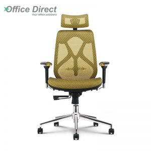 RAINBOW RB-1B high back office chair-custom colour