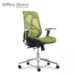 RAINBOW RB-2B low back office chair-custom colour