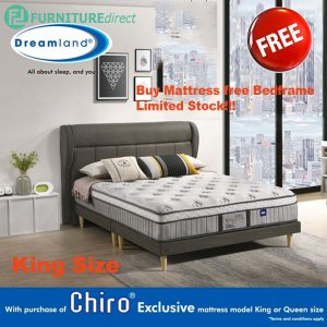 "DREAMLAND Chiro Exclusive 12"" miracoil mattress with free bedframe"